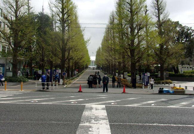 東横線の日吉駅前、こんなに交通便利で緑が広がるキャンパスは稀少だ。