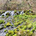 羊蹄の名水と美しい水の景色