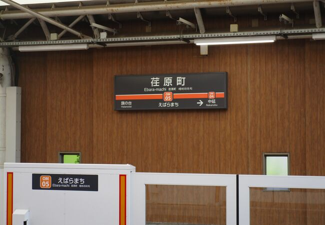荏原七福神巡りの法連寺(恵比寿)が荏原町駅の前にあります。