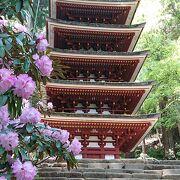 女人高野と言われるお寺、石楠花が綺麗でした。宝物殿は新しい