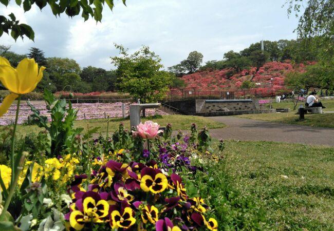 長峰公園(栃木県矢板市)