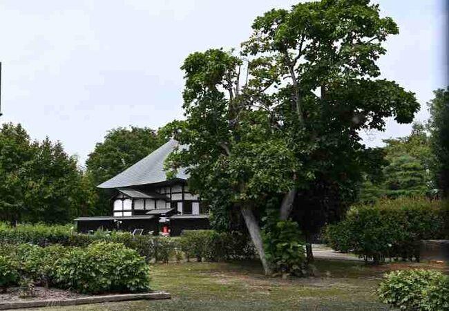 満徳寺遺跡