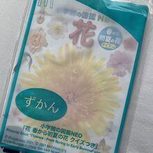 マクドナルド 羽田空港第2ターミナル駅店
