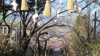 住三吉神社