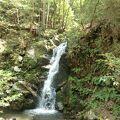 森林浴と滝を楽しむ