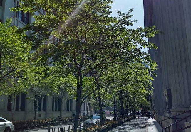 新緑の季節へと