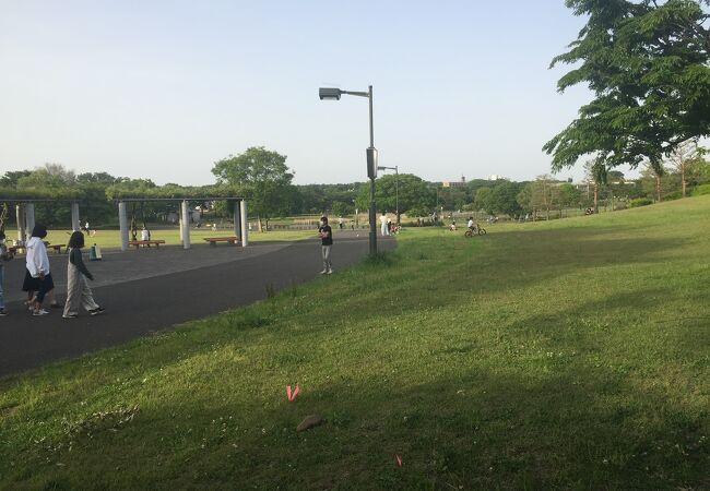 調布飛行場に面した気持ちの良い公園