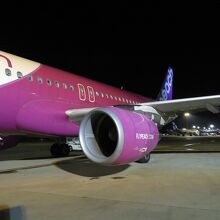 ピンクで彩られた機体が特徴。