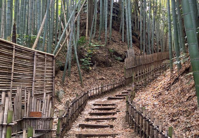 江戸時代風に整備された小道