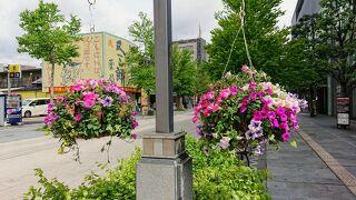善光寺花回廊-ながの花フェスタ-