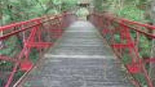 鹿教湯温泉 紅葉橋