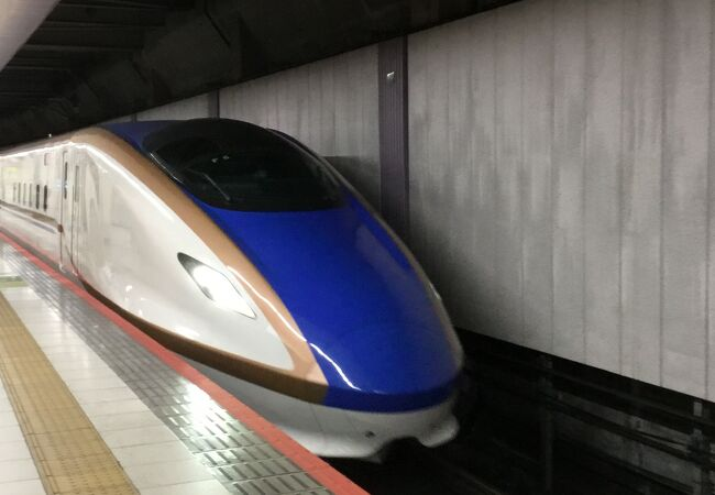 えきねっと新幹線eチケットで正規運賃の半額で上野ー新潟往復利用!