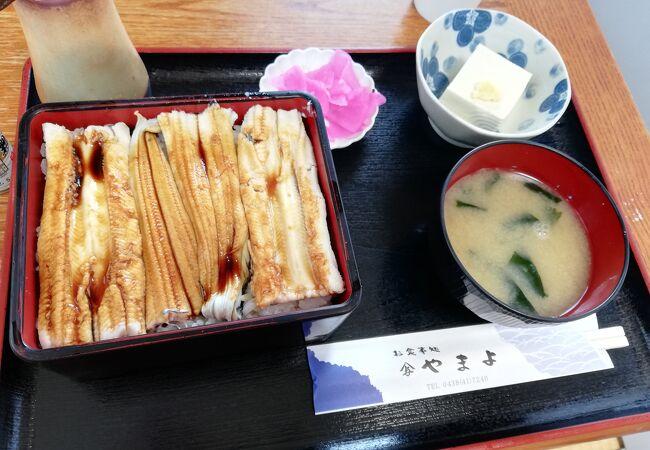 穴子は臭くありませんよ。天ぷらも良いし煮あなごも良いです。