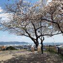 日和山公園(宮城県石巻市)