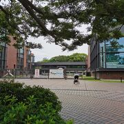 上野公園 東京都美術館