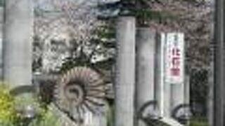 美祢市化石館