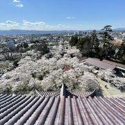 鶴ヶ城公園を一望