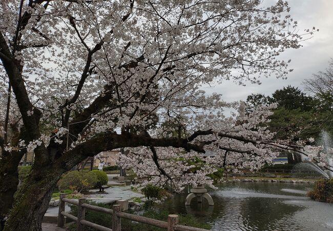 第二公園(栃木県栃木市)