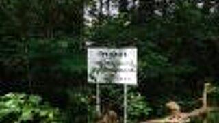 つるま自然の森