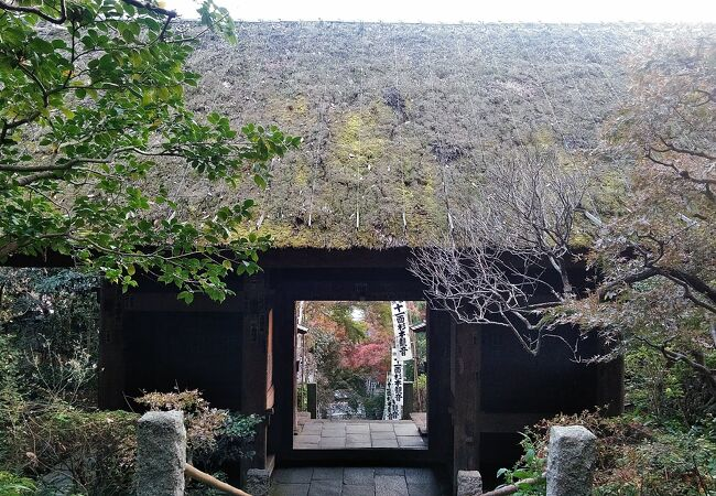 茅葺き屋根の山門の仁王尊は運慶作