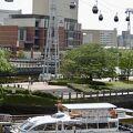 横浜の新しい乗り物