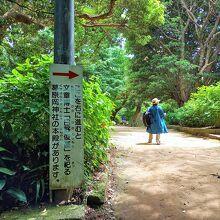 源氏山公園(神奈川県鎌倉市)