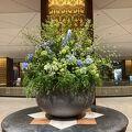 リーガロイヤルホテル大阪 行って来ました。