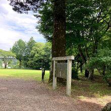 武田と徳川が奪いあった城 日本100名城の一つ