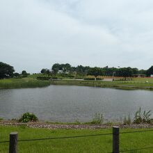 修景池は災害時の生活用水