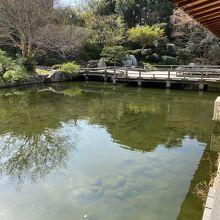 大きな日本庭園です