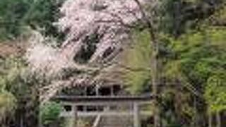 金峯神社(奈良県吉野町)