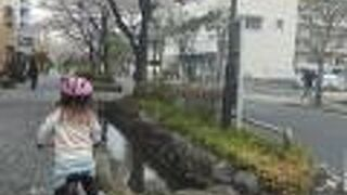 葛西親水四季の道