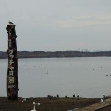 クッチャロ湖の眺め