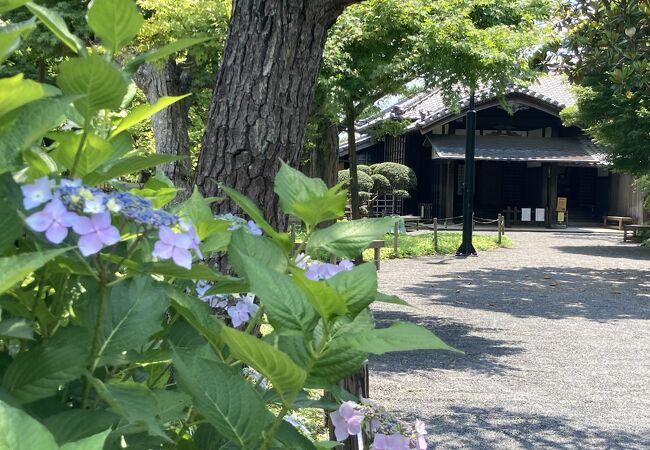 旧堀田邸(重要文化財旧堀田家住宅)