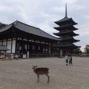 五重塔とシカのくみあわせは奈良の定番。