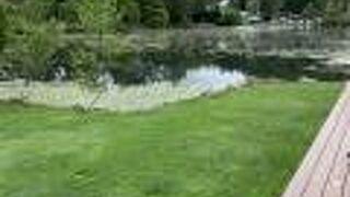 白樺リゾート 池の平レイクサイドプラザ
