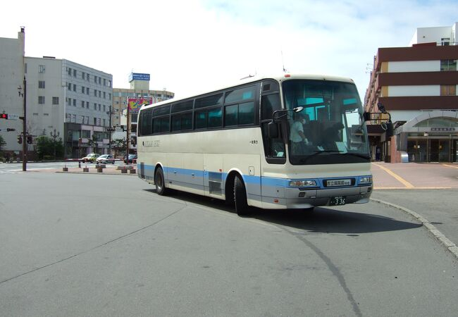 鶴が描かれていないバスもありました