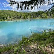 青い池周辺はすっかり整備されていました