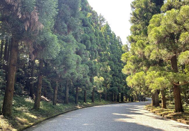 武蔵陵墓地