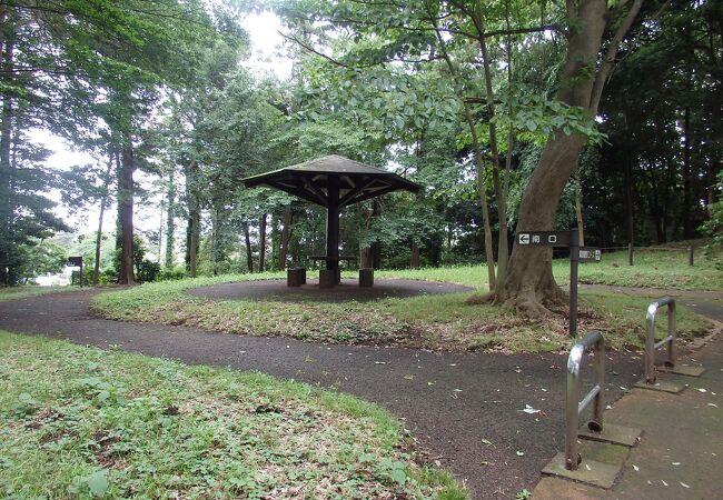 伊勢山自然公園