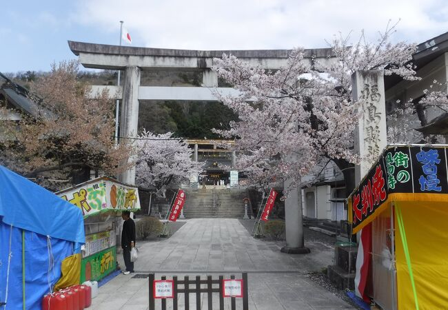 信夫山公園桜まつり