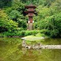 三重塔と目の前の池がとっても美しい! 本堂内の、九体の阿弥陀如来も見学すべし!