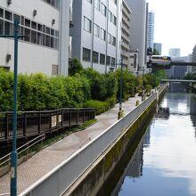 新芝運河沿緑地