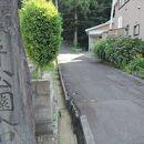 横手公園(秋田県横手市)