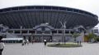 坊っちゃんスタジアム (松山中央公園野球場)