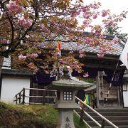 山全体に寺や神社があるので見ごたえあります