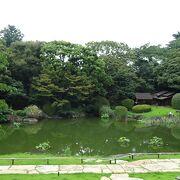 こんな綺麗な中庭が有ることにびっくりしました。