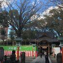 田無神社のイチョウ