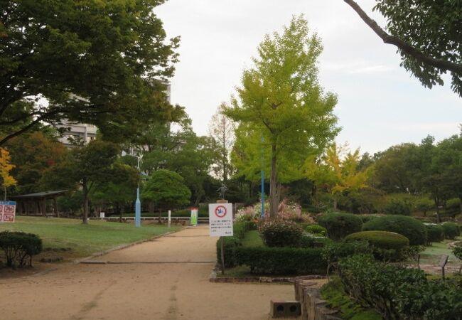 国際児童年記念公園こどもの森