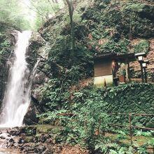 不動滝(神奈川県湯河原町)